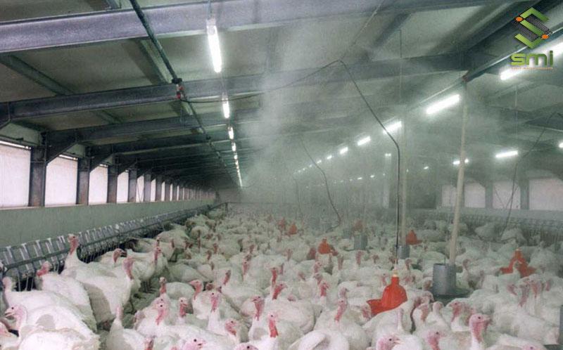 Hệ thống phun sương trong nhà xưởng là giải pháp làm hạ nhiệt và làm mát thường thấy